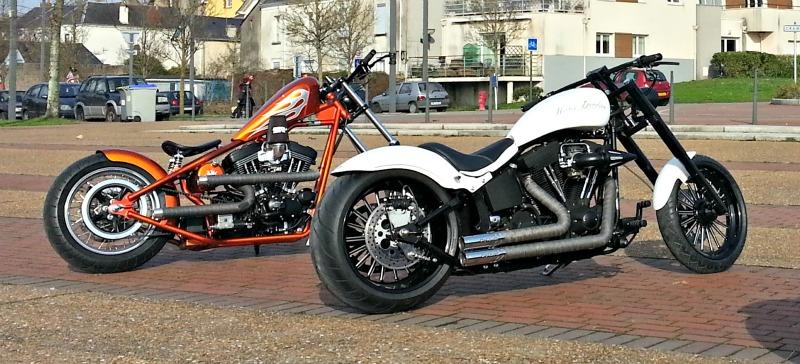 Superbes Harleys