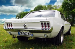mustang arriere 2